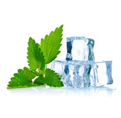 Nictel 10ml E-Liquid : Menthol Flavour